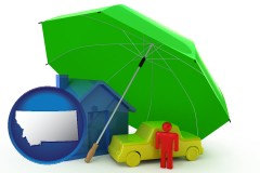 mt map icon and types of insurance