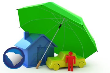types of insurance - with South Carolina icon